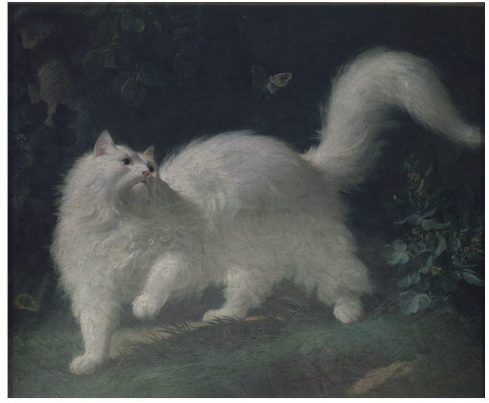 Cats in Hostory of Art
