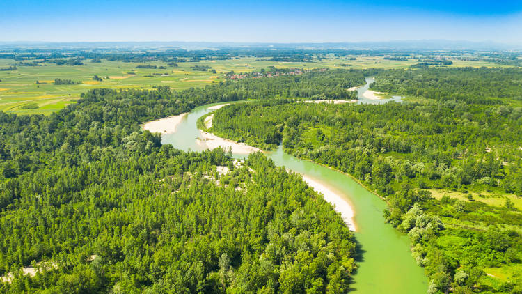 The Drava river turns as green as its surroundings in Međimurje County