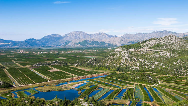 Fertile Neretva valley with crops and blue sky