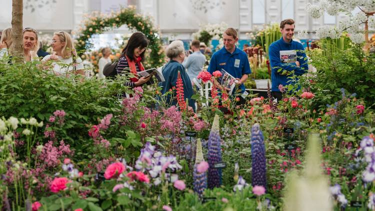 A crowd of visitors in the Great Pavilion at RHS Chelsea Flower Show 2019.