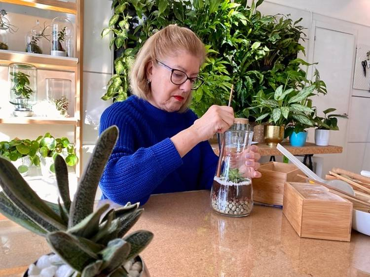 Un terrario vegetal DIY