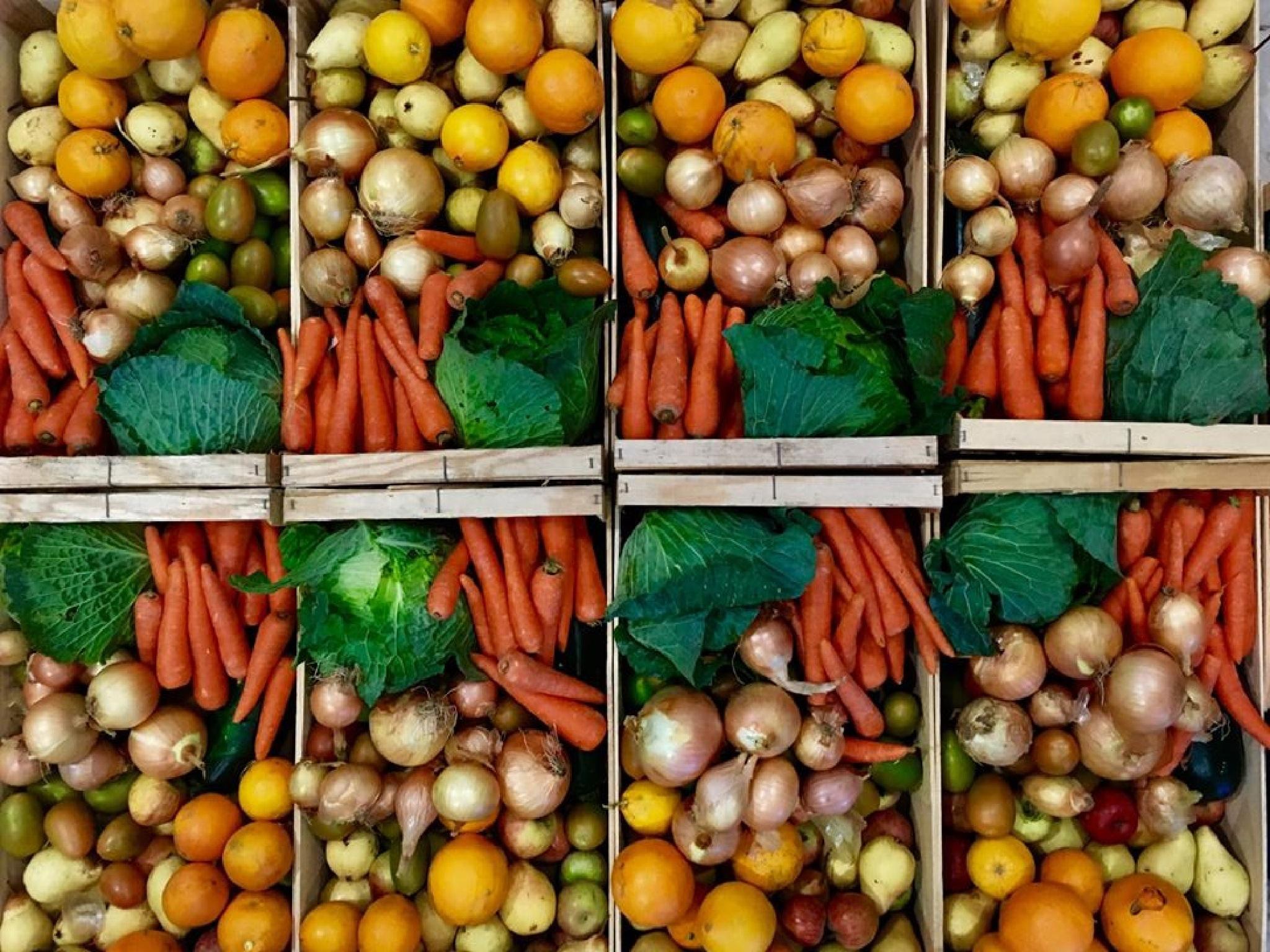 Projectos Sustentáveis, Fruta Feia