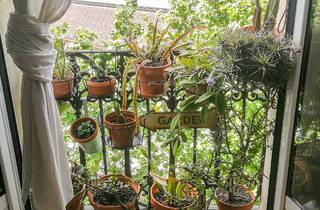 Plantes i verd als balcons