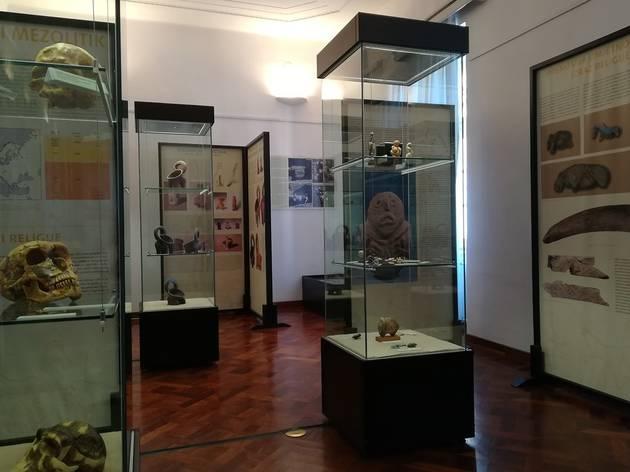 Zadar Archaeological Museum