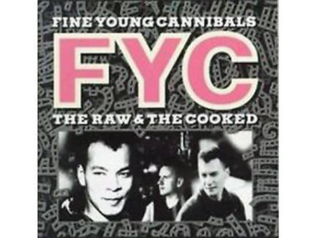 'She Drives Me Crazy', Fine Young Cannibals