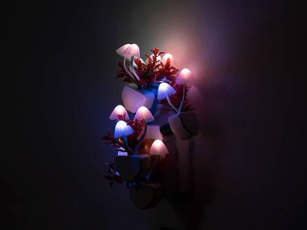 Blindspot Gallery, Trevor Yeung