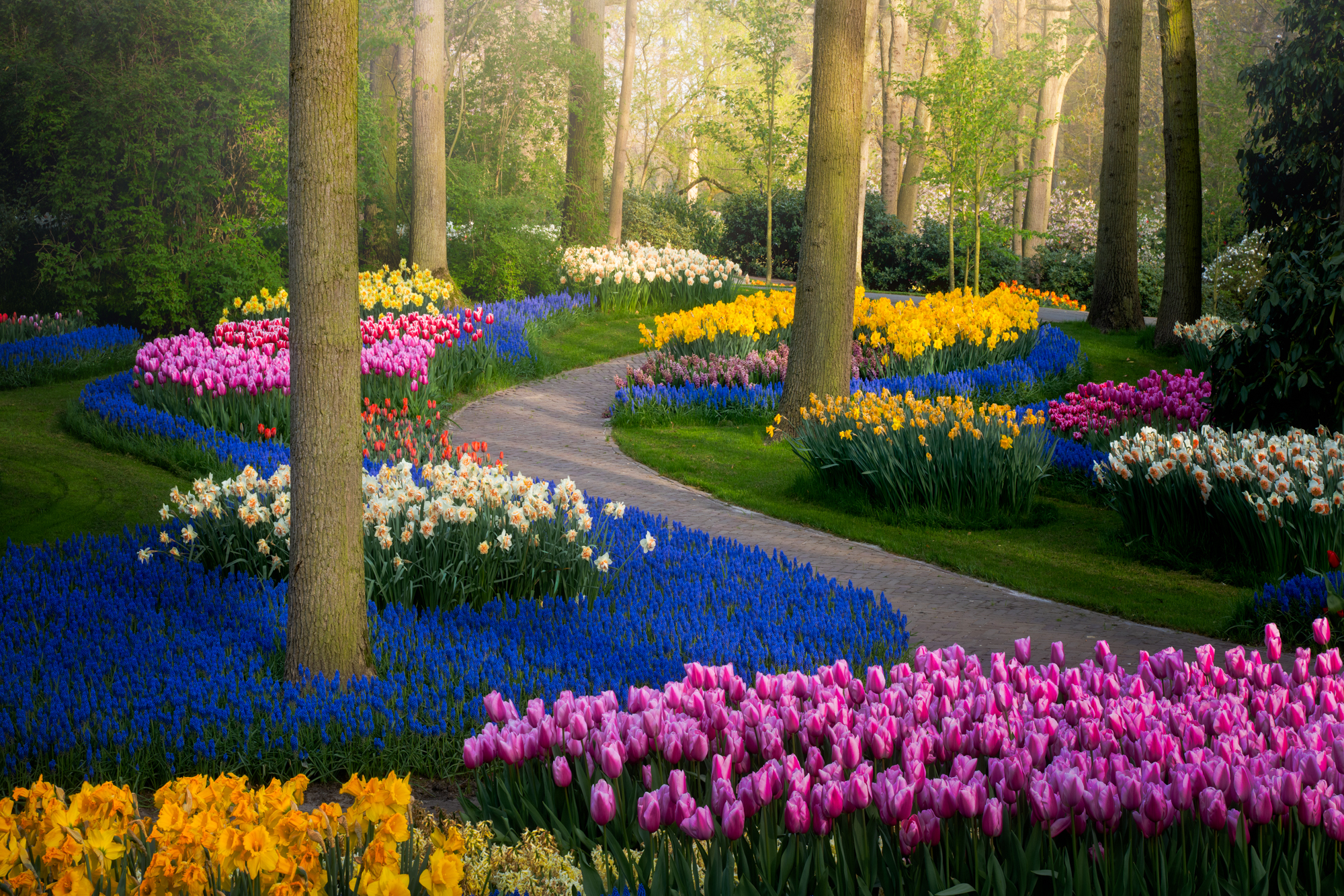 The world's most beautiful tulip garden is closed for 2020 – but here's a glimpse inside