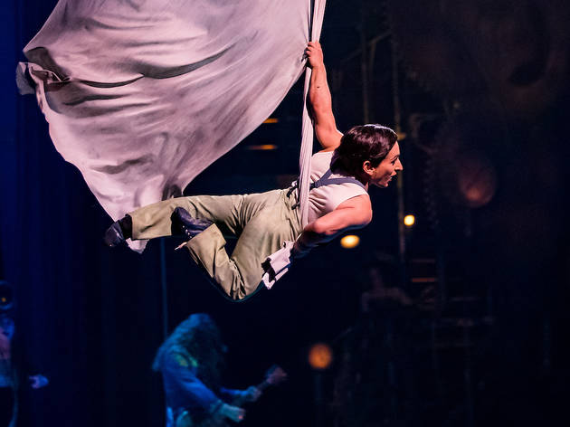 Cirque du Soleil: One Night for One Drop