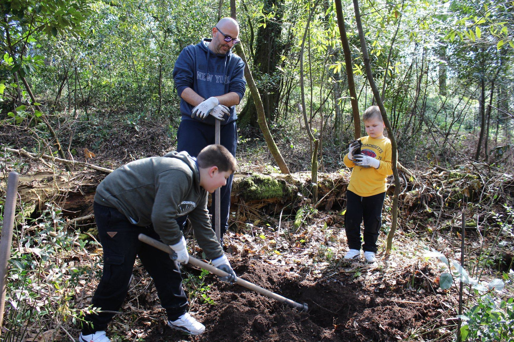 Conheça três projectos que trabalham pela reflorestação do país