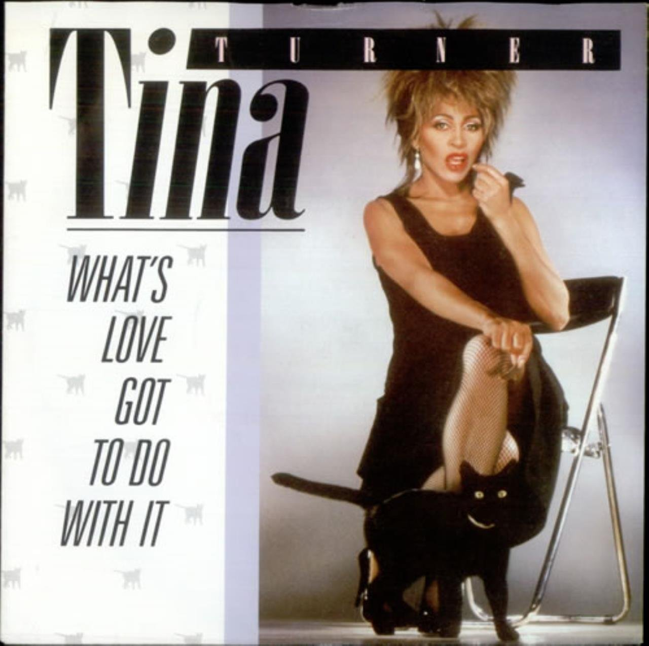 'What's Love Got to Do with It', Tina Turner