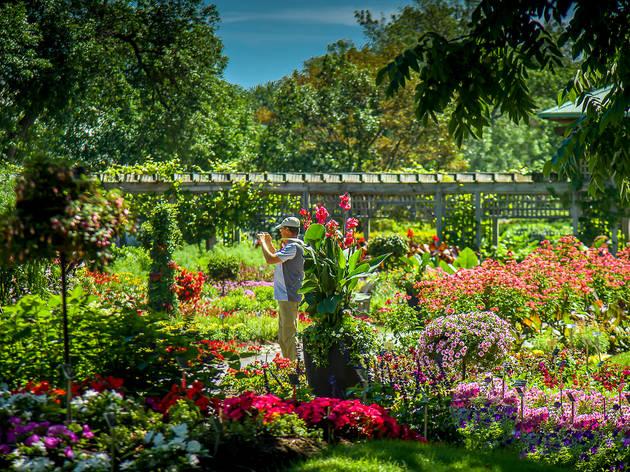 Jardin botanique de Montréal – Espace pour la vie