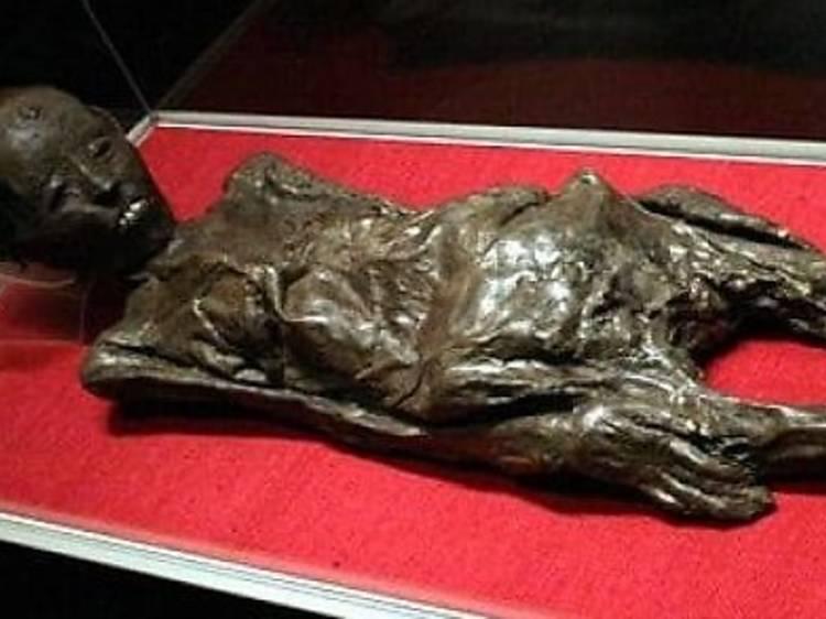 Visit the Zagreb mummy
