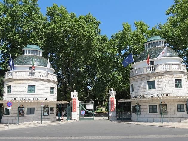 Zoo de Lisboa reabre ao público esta semana com novas regras