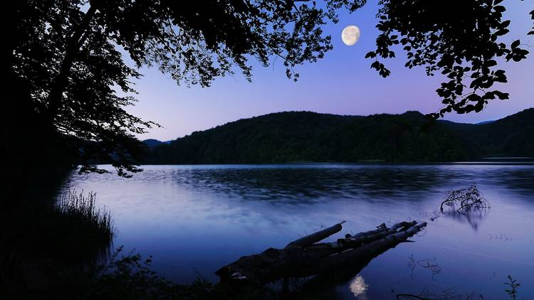 The night sky over Plitvice Lakes National Park is a dream