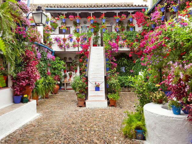 Patios de Córdoba visitas virtuales