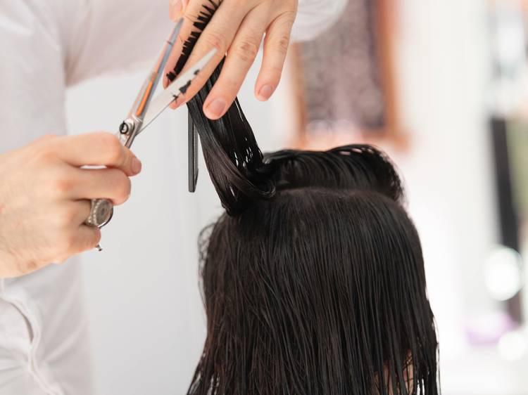 6. Terás farta cabeleira