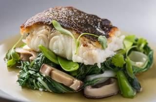 Harbourside Grill fish dish