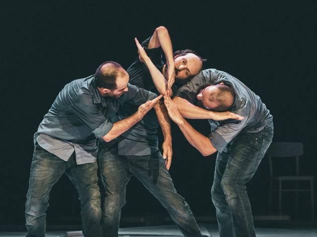 Performance, Dança, Factus V
