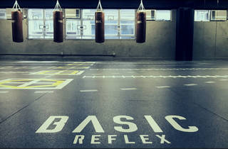 Basic Reflex gym