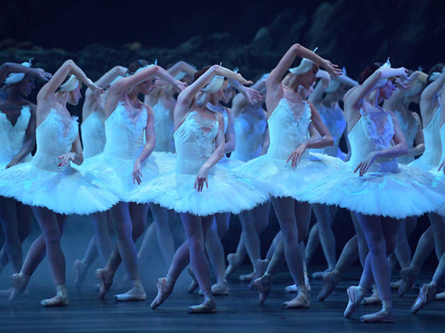 swan lake, english national ballet, enb