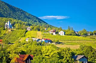 Plesivica, wine, zagreb county