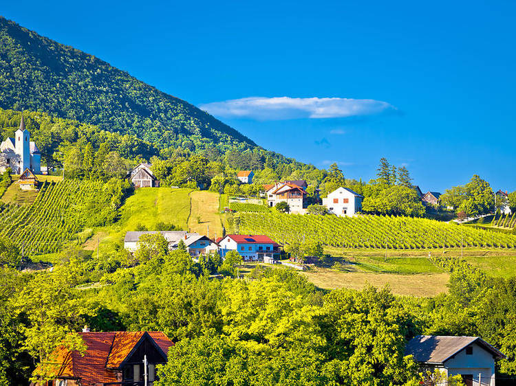 VIDEO: The little-known winemakers of beautiful Zagreb County