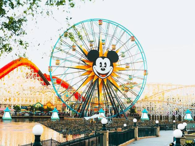 Virtual Disney World