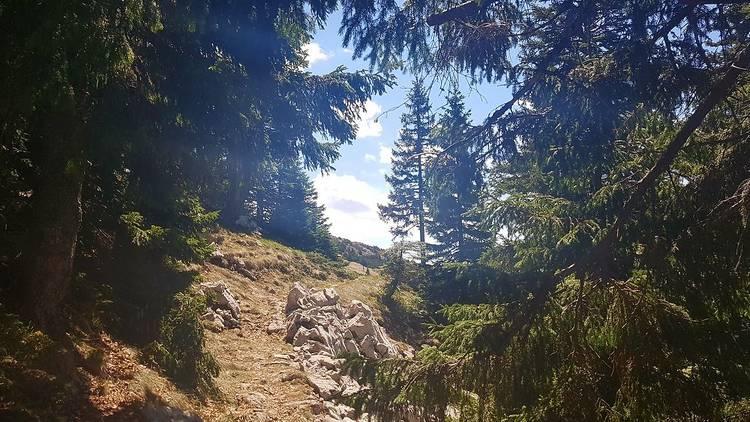 trek, treking liga, hike, bike, nature, trail