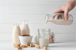 Nutty Milk Factory