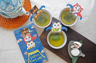 Cat Cafe green tea