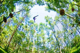 Forest Adventure Park Yokohama