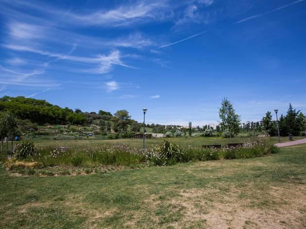 Quinta da Granja, Benfica