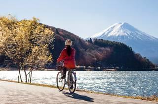 Mt Fuji - stock photo