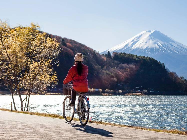 東京近郊、日帰り旅行ベスト10選