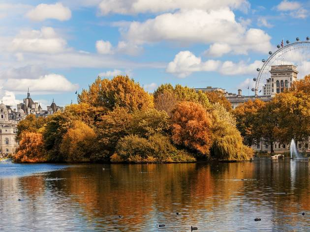 St James Park in October