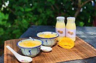 Le Vyr mango sago milk kefir