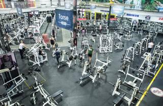 Monster Gym Montreal
