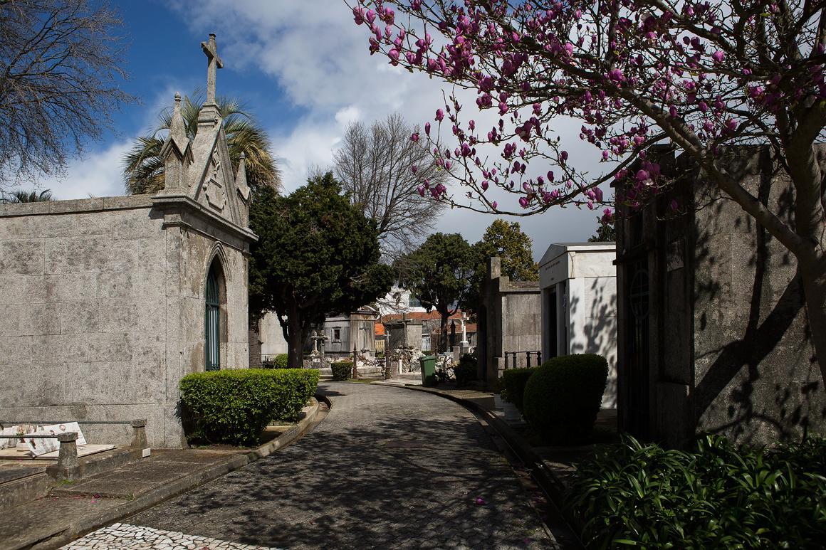 Cemitério de Agramonte