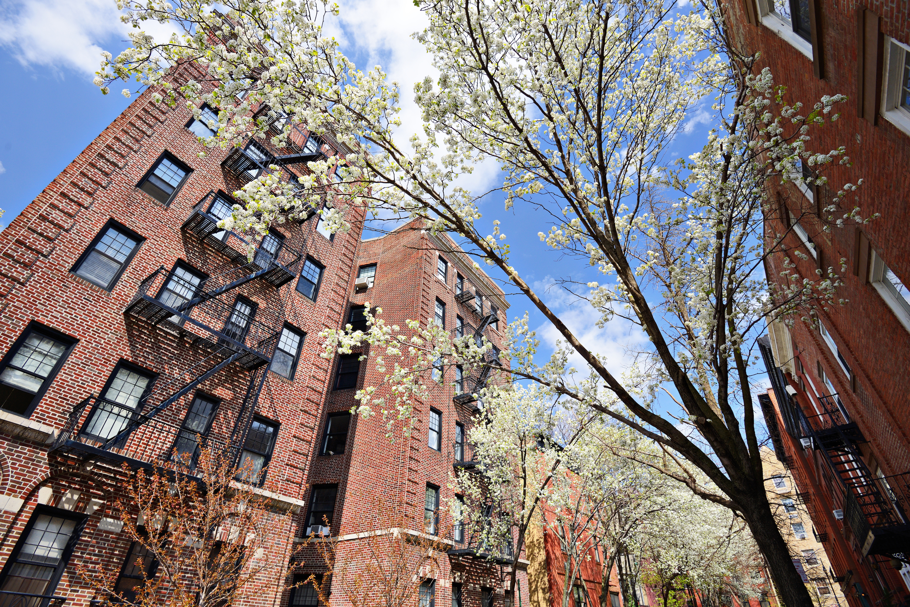 Con Ed says NYC should expect high electricity bills this summer