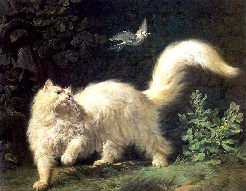 Conoce el museo de los gatos en este recorrido virtual