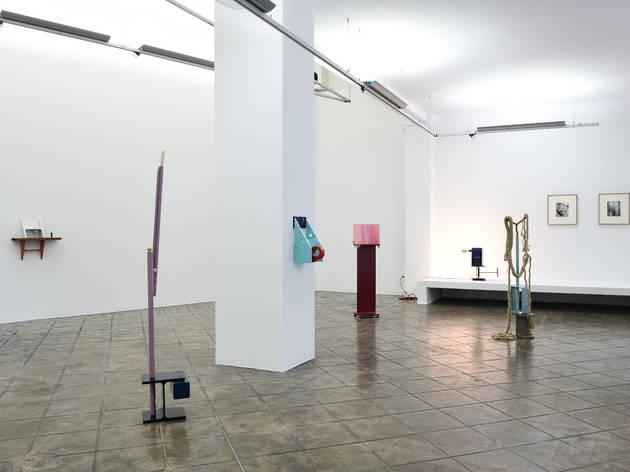 Koenraad Dedobbeleer, ProjecteSD