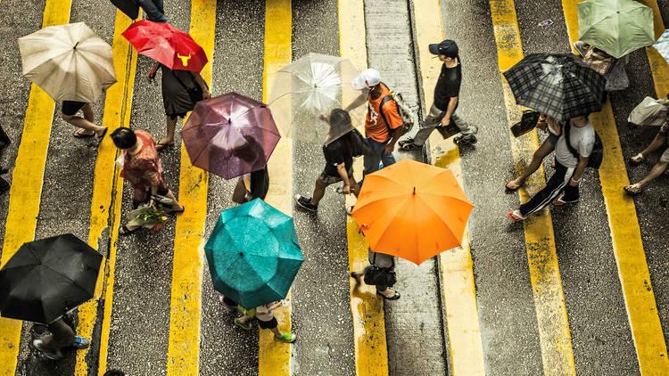 hong kong rain, things to do when it rains