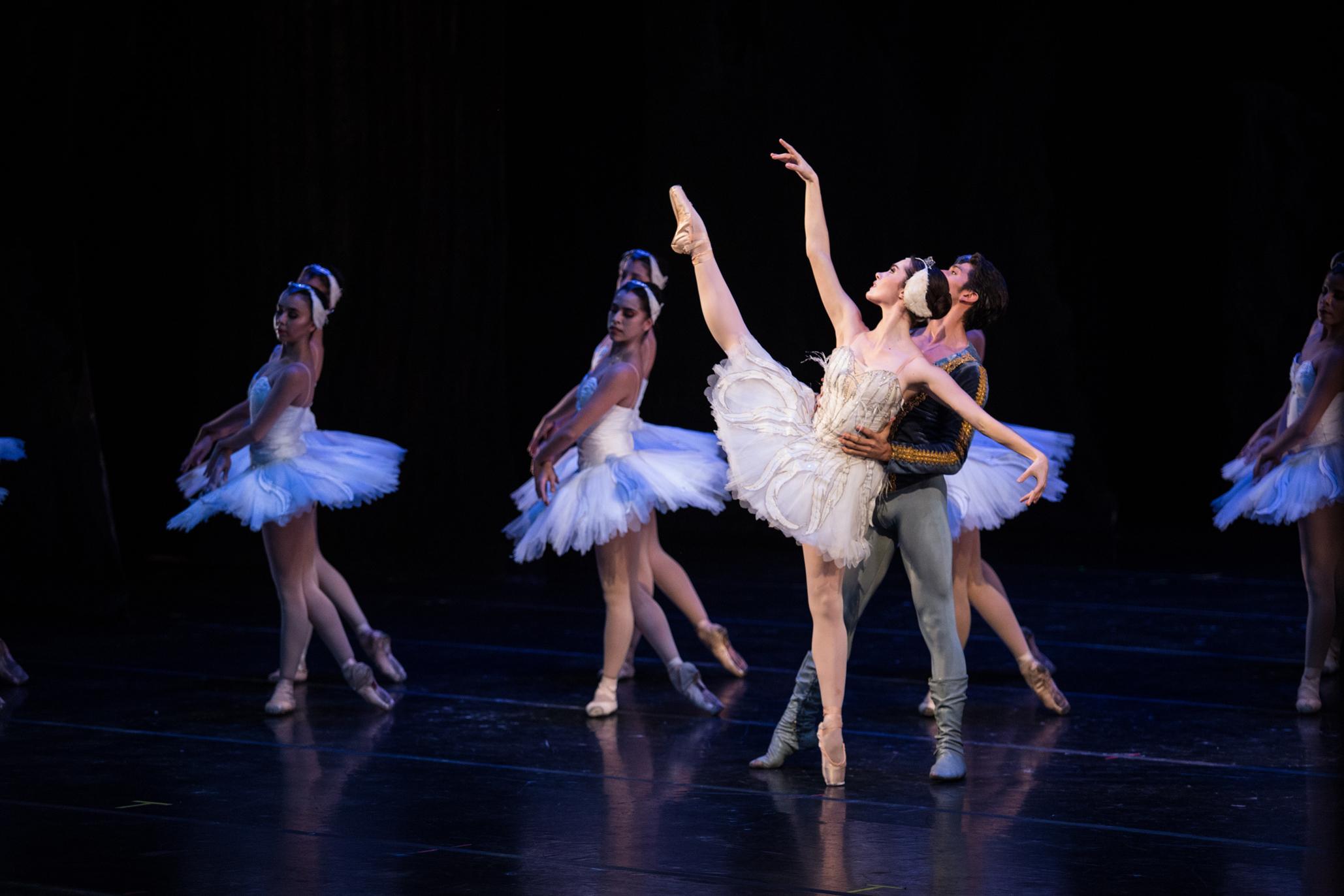 El lago de los cisnes en bellas artes con la compañía nacional de danza