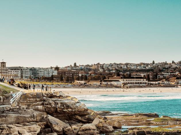 View of Bondi from cliff