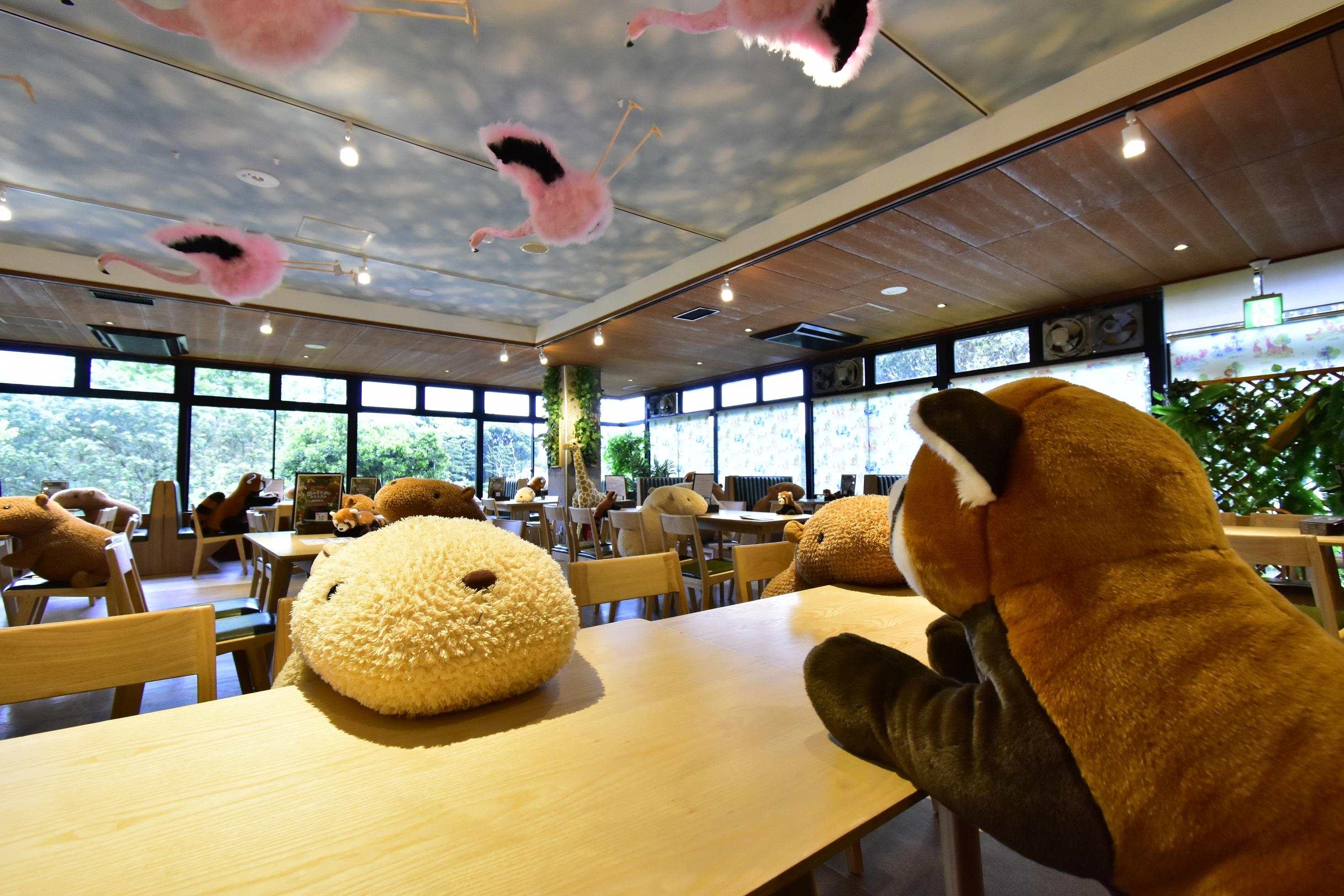 Izu Shaboten Zoo social distancing