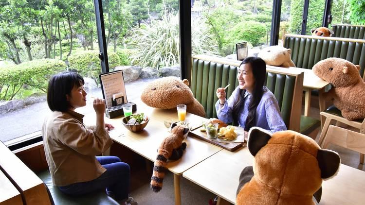 Izu Shaboten Zoo social distance