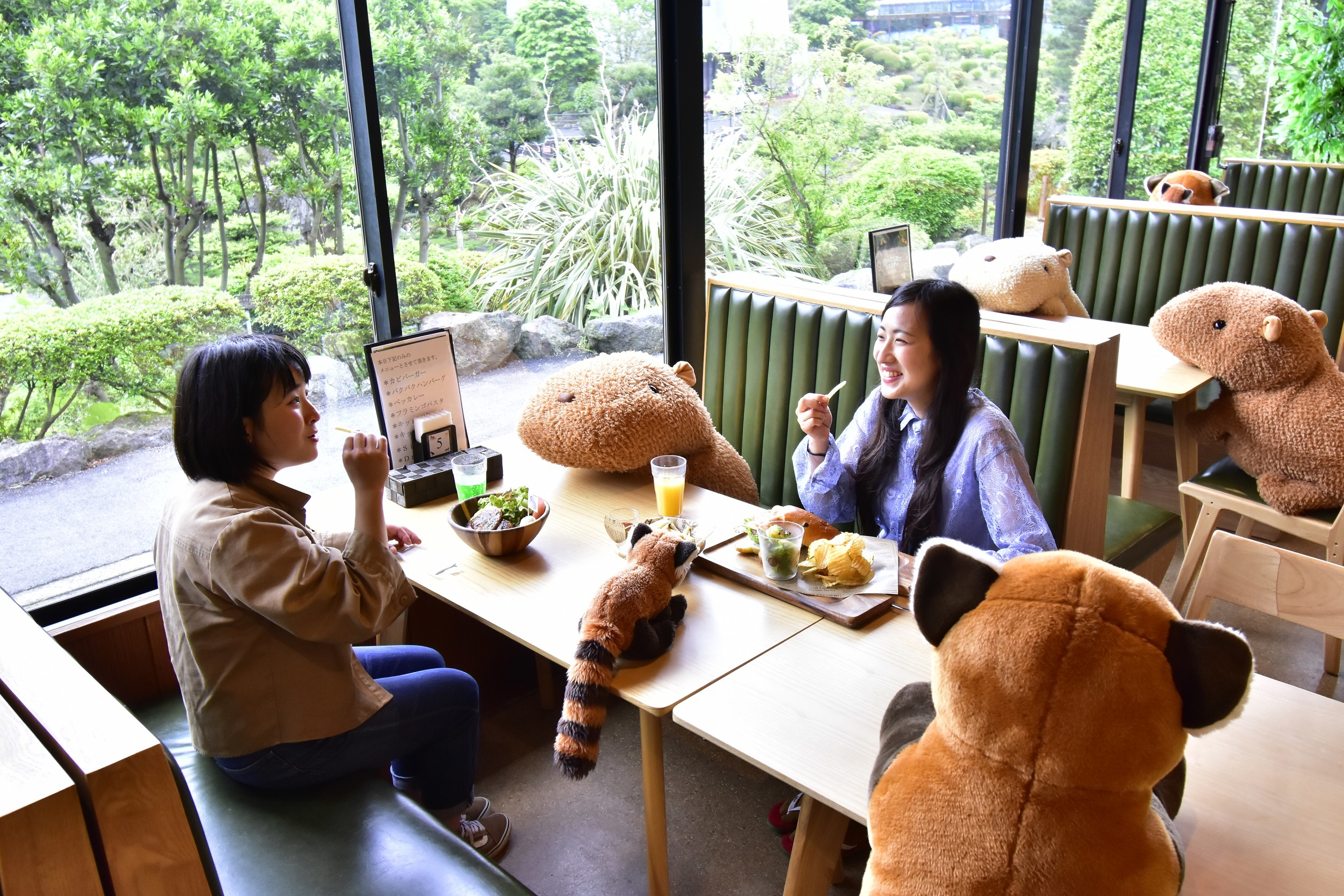 This Japanese café is enforcing social distancing with adorable soft toys