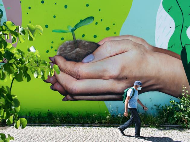 Mural Capital Verde Europeia - Smile1art