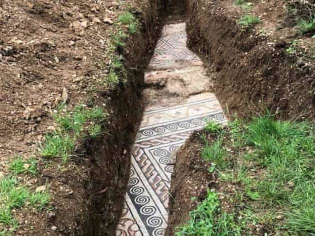 A Roman mosaic is found under grapevines