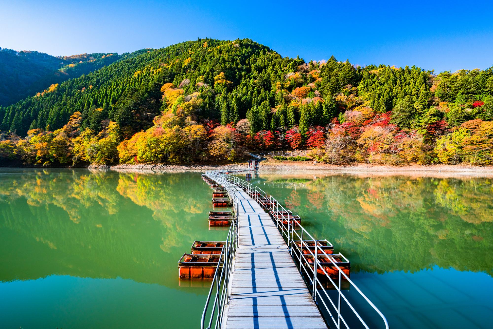 Best things to do in Okutama